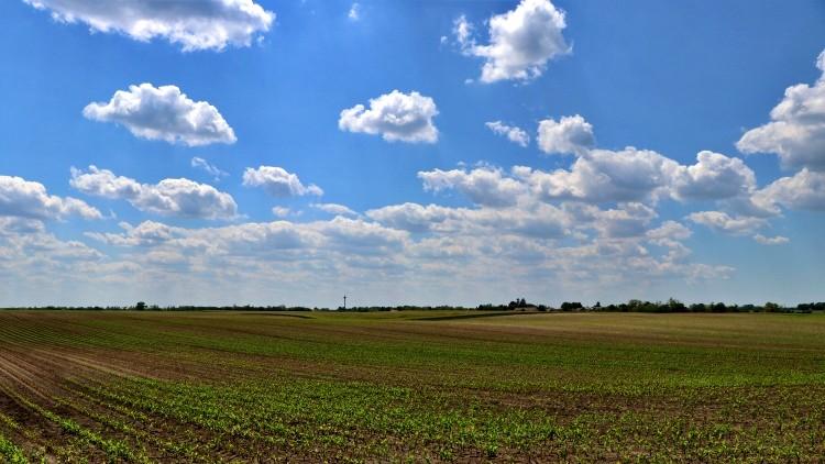 kisüzemi pályázat mezőgazdaság