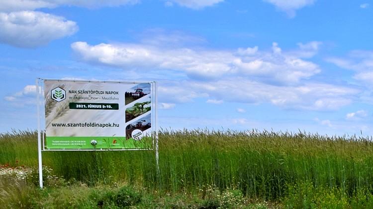 Mezőgazdaság, szántóföldi bemutató