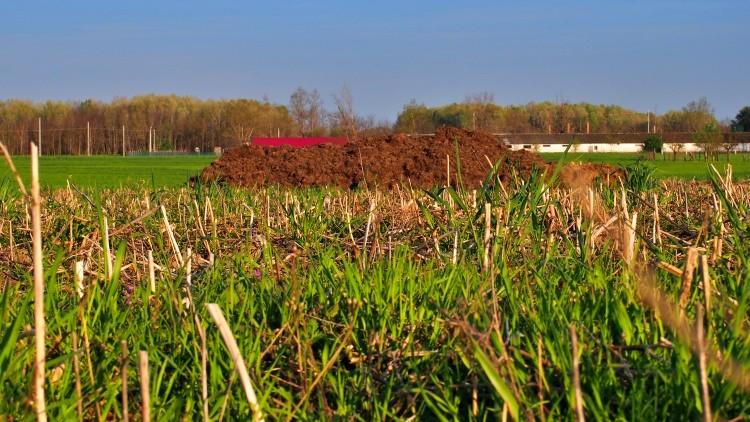 Mezőgazdaság, trágyázási munkák