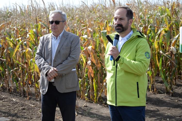 kukorica szántóföld emberek szemüveg mikrofon