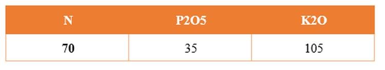 A tarlóban lévő makroelemek mennyisége (kg)