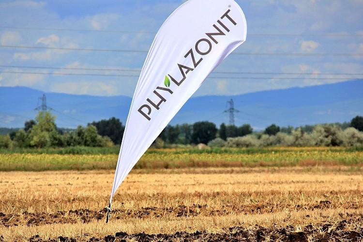 Phylazonit